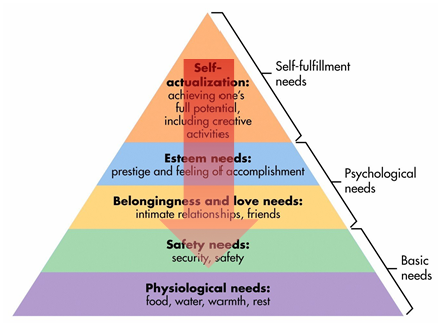 lowest tiers of Maslow's hierarchy